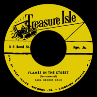 Flames In The Street -7