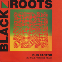Dub Factor -The Mad Professor Mixes
