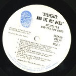 Sylvester And The Hot Band