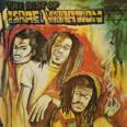 The Best Of Israel Vibration